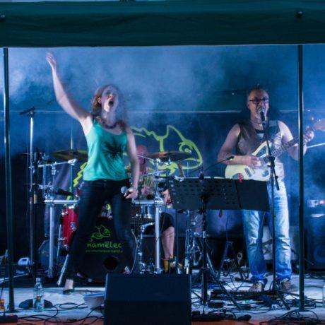 Straßenfest Wiernsheim_2016_01